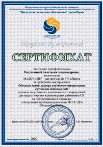 Сертификат Подушкиной А. А.